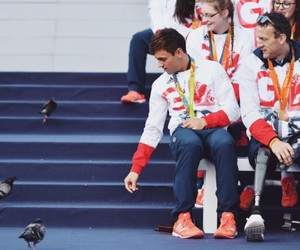diver, tom daley, and team gb image