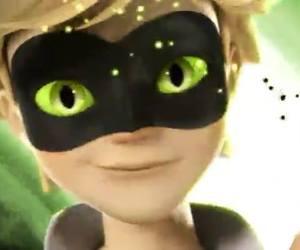 Chat Noir, Adrien, and ladybug image