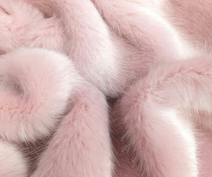 pink, fur, and aesthetic image