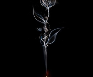 candle, photography, and rose image