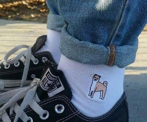 converse, dog, and socks image