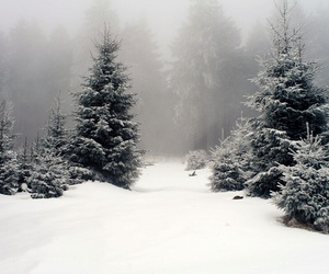 snow, winter, and gif image