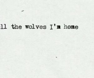 wolves, quotes, and home image