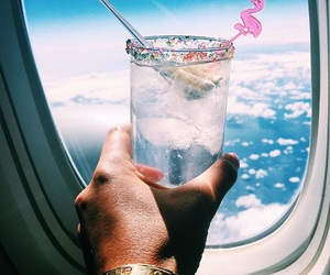 drink, travel, and fly image