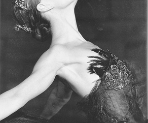 black, Swan, and black and white image