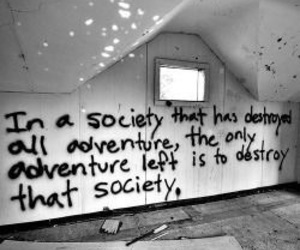 society, adventure, and quotes image