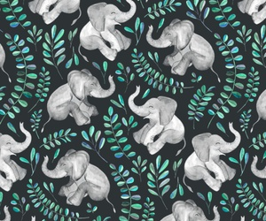 elephant, background, and wallpaper image