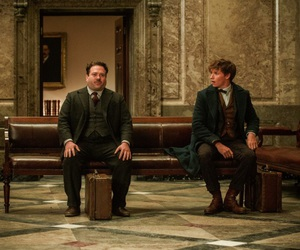 jkrowling, fantastic beasts, and potterhead image