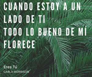 frases, Lyrics, and quote image