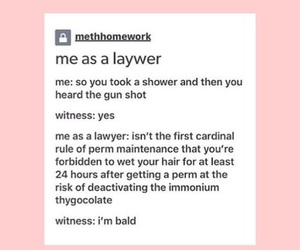 elle woods, lawyer, and legally blonde image