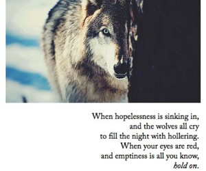hopeless, quote, and song image