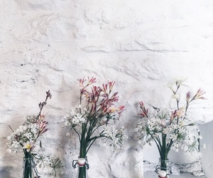 coffee shop, inspiration, and flowers image