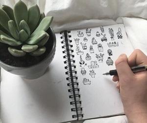 cactus, art, and tumblr image