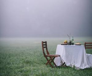 alone and garden image