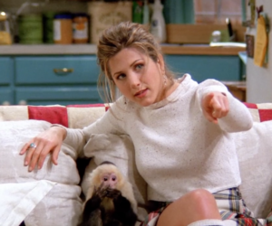 friends, Jennifer Aniston, and marcel image