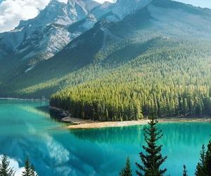 destination, lake, and nature image