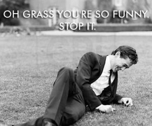 funny, grass, and lol image