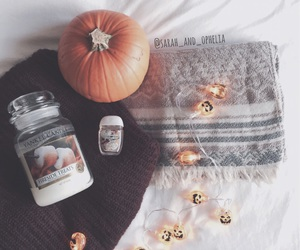 autumn and sweater weather image