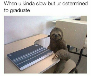funny, school, and meme image