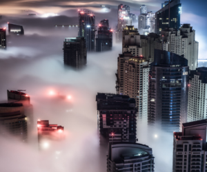 city, night, and fog image