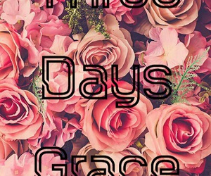 flowers, wallpaper, and three days grace image