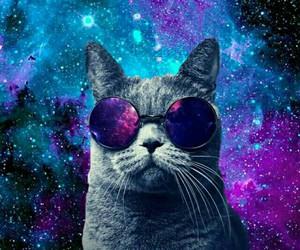 cat, espace, and espacio image