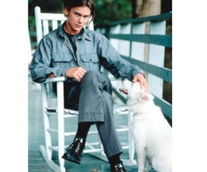 animals, peace, and river phoenix image