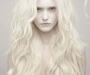 white, hair, and blonde image