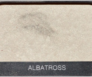 eyeshadow, tumblr, and albatross image