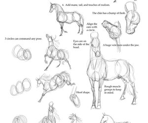 horse, drawing, and how to draw image