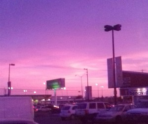 pink, purple, and mx image