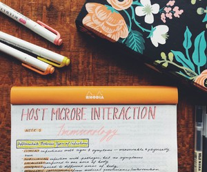 college, notes, and organization image