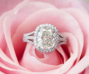 ring, rose, and wedding image