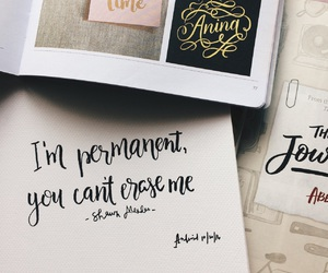 calligraphy, aftertaste, and shawn mendes image