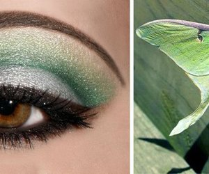green, makeup, and hunger games image