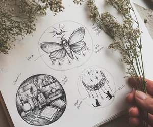 amazing, art, and butterfly image