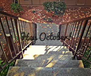 autumn, steps, and beauty image