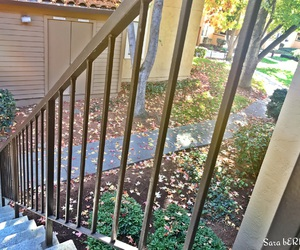 autumn, beautiful day, and stairs image