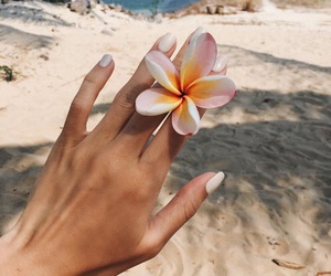 beach, flowers, and nails image