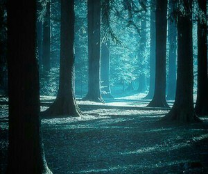 Image by ~️ Expecto Patronum ~