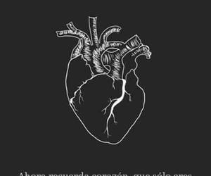 heart and frases image