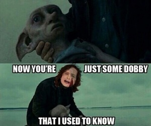 dobby, harry potter, and funny image