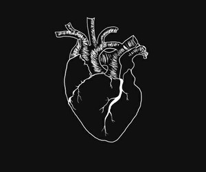 aesthetic, black, and heart image