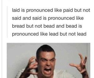funny, english, and tumblr image