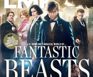 fantastic beasts and newt scamander image
