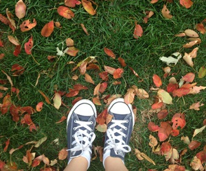 autumn, converse, and cool image