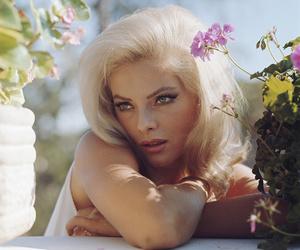 actress, beauty, and italian image
