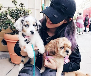 adorable, animal, and besties image
