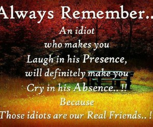 friends, idiot, and laugh image