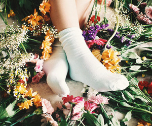 flowers, vintage, and socks image